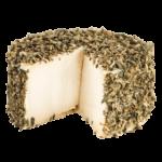 Alternative végétale au fromage frais aux herbes